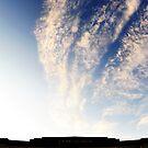 Tropicana sky by MWhitham