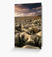 Conistone I Greeting Card