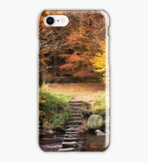 Autumn Colours  iPhone Case/Skin