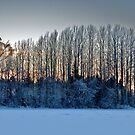 Setting Sun by SunDwn