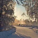 Sun, Snow and Steam by SunDwn