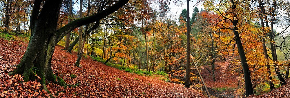 Autumn in Sunnydale by Simon Bowen