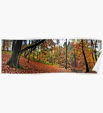 Autumn in Sunnydale Poster