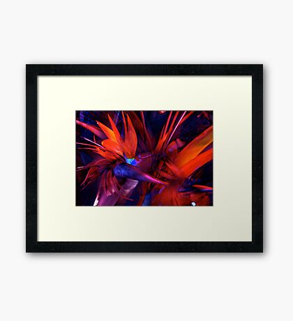 Here it is... Paradise Framed Print