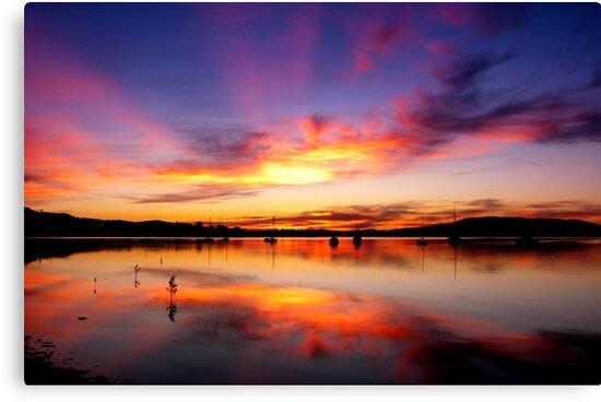 Koolewong sunrise by Brad O'Brien
