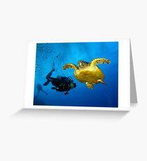 Dancing With Sea Turtles Greeting Card