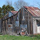 Old Farm House by Cathy Jones