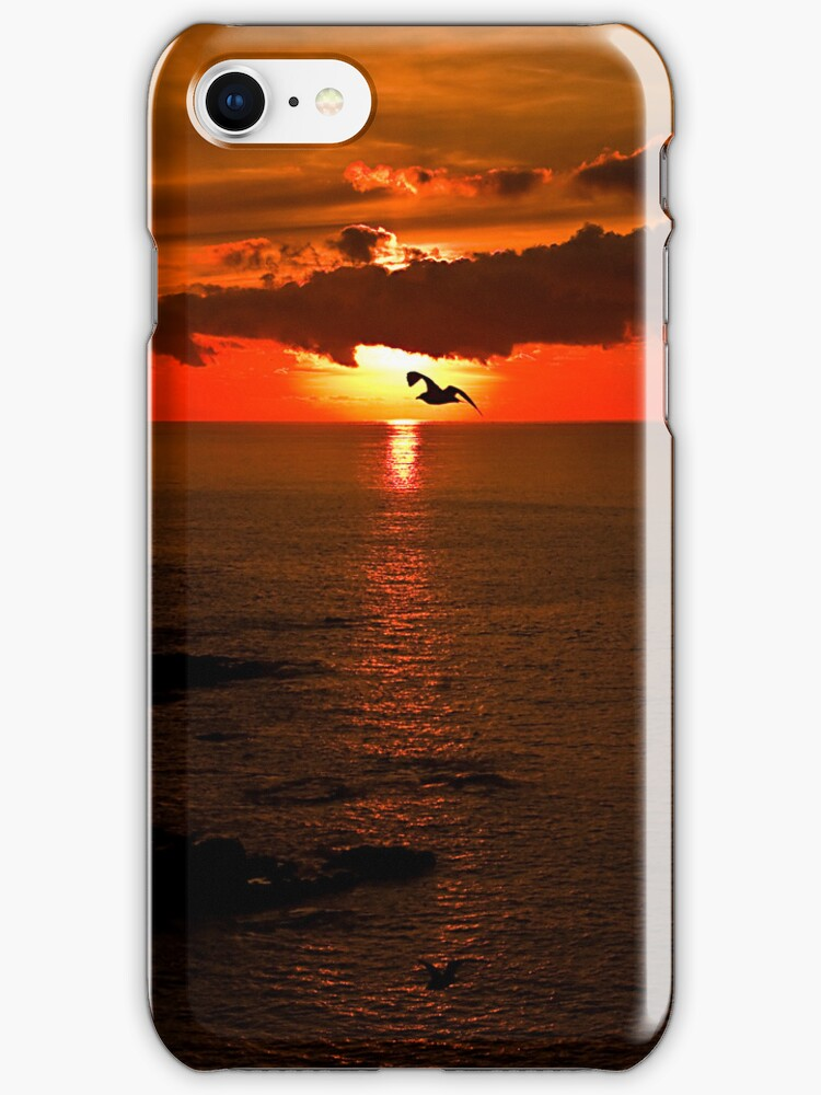 Sunrise at Lizard Point iPhone Case by Country  Pursuits