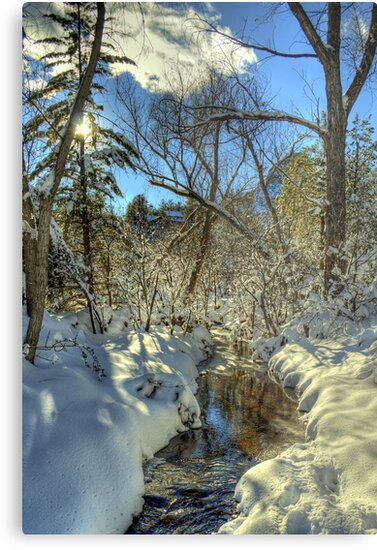 """ Snow, Sun, and Shadows"" by K D Graves Photography"