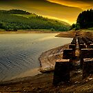 Monoliths across the Valley by Martin Jones
