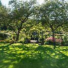 Come into my garden by SusanAdey