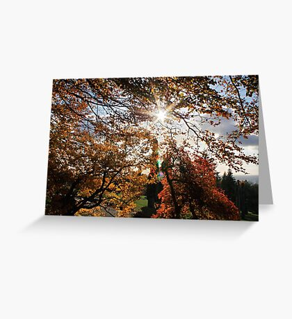 Fall in BC Greeting Card