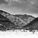 Ossogovo mountain by Ivo Velinov