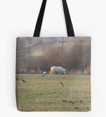 that sheep insists on posing! Tote Bag