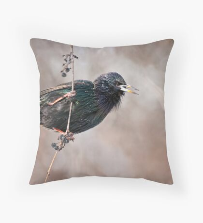 European Starling Throw Pillow