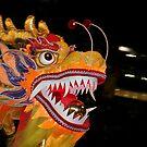 Dragon head by Antoine de Paauw