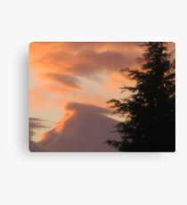 Today I woke up to a beautiful day 2 Canvas Print