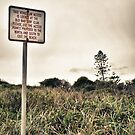 Beach Sign by Conor  O'Neill
