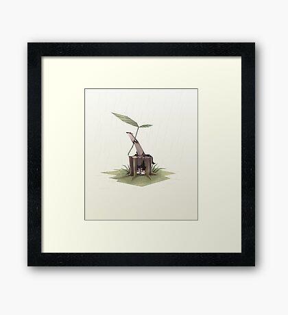 Ferrets in the rain Framed Print