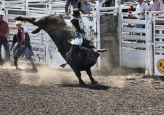 No Bull About It by Leslie van de Ligt