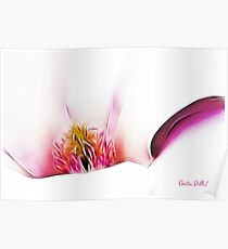 Abstract Magnolia Poster