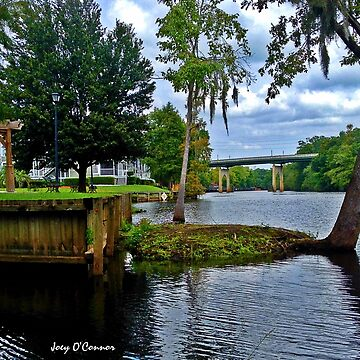 Down By The River in Conway South Carolina by JoeyOConnor
