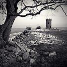 Twr Ffoledd (The Folly Tower) by Steve  Liptrot