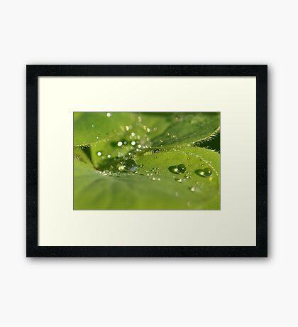 Every drop matters ~ Framed Print