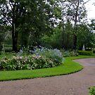 My Garden in Summer by Gabrielle  Lees