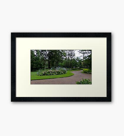 My Garden in Summer Framed Print