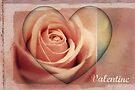 Valentine Heart by Vanessa Barklay