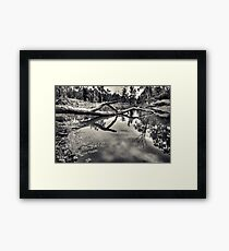 Crystal Pond Framed Print