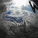 Winter Reflections 2 by Ellen Cotton