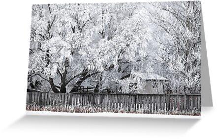 Winter Wonderland by Réjean Brandt