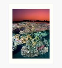Sunset at the Red Sea Reef Art Print