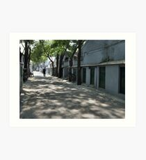 Beijing 2006 - Shaded and peaceful Art Print