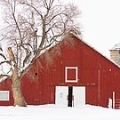 Red Barn Winter Country Landscape by Bo Insogna