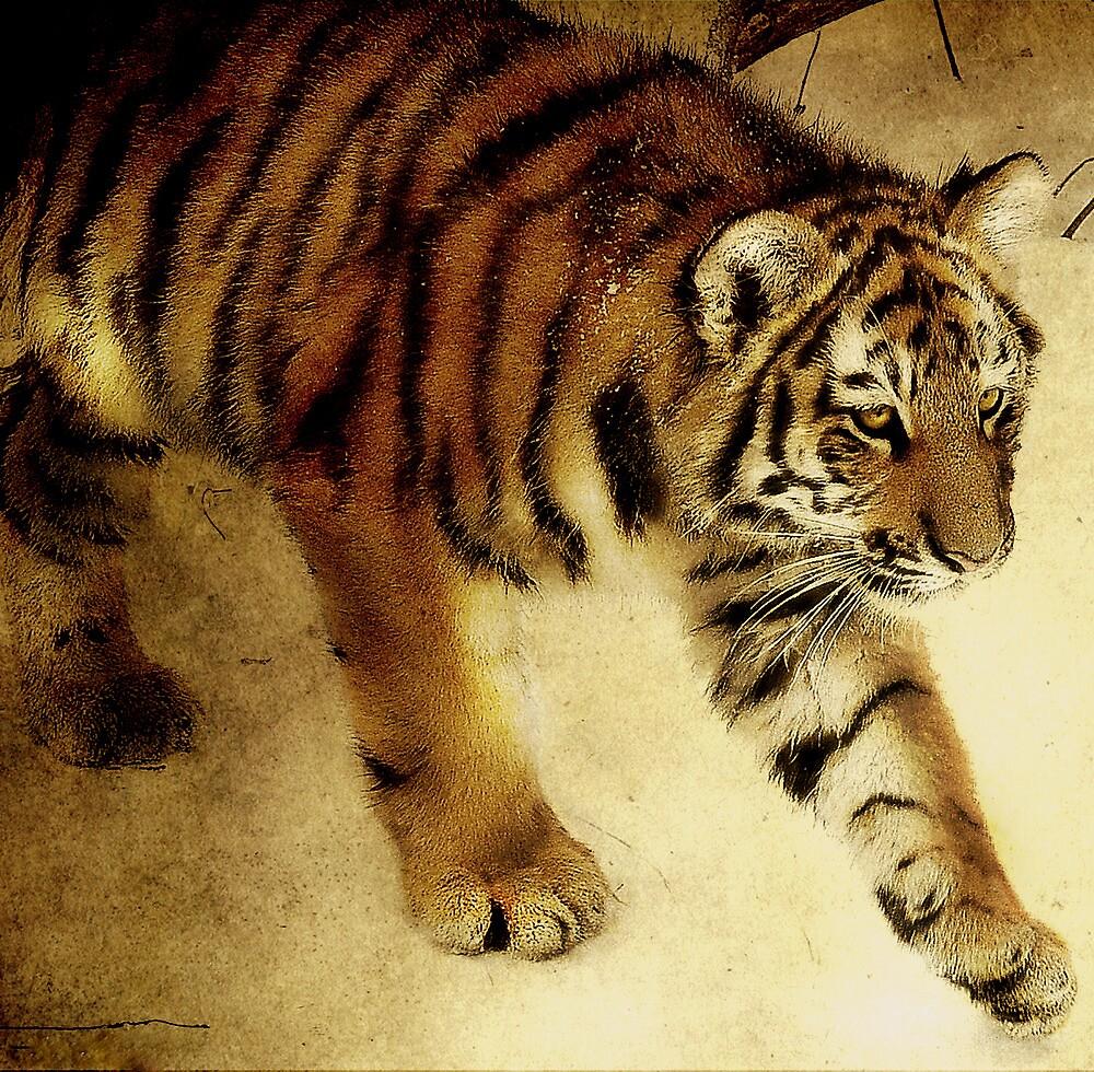 The Siberian Cat by Alan Mattison