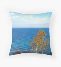 Arcadia Overlook Throw Pillow