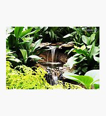Fitzroy Gardens Melbourne, water feature Photographic Print
