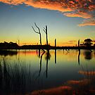 Sunset at farm dam at Forest in nor west Tasmania , Australia by phillip wise