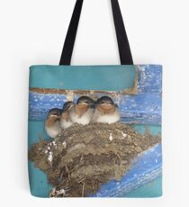 Swallows - all grown up and about to fly Tote Bag