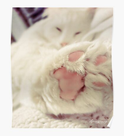 Talk 2 the Paw Poster
