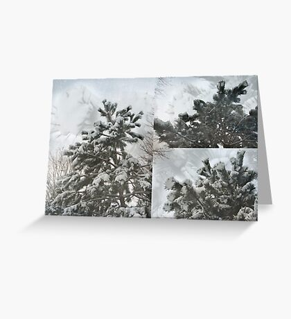Snow on pines - collage Greeting Card
