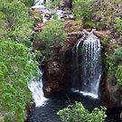 Jourama Falls - Near Townsville, QLD  by Karen Stackpole
