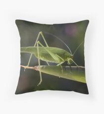 Tettigonia viridissima Throw Pillow