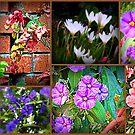 In my garden........ by Karlientjie