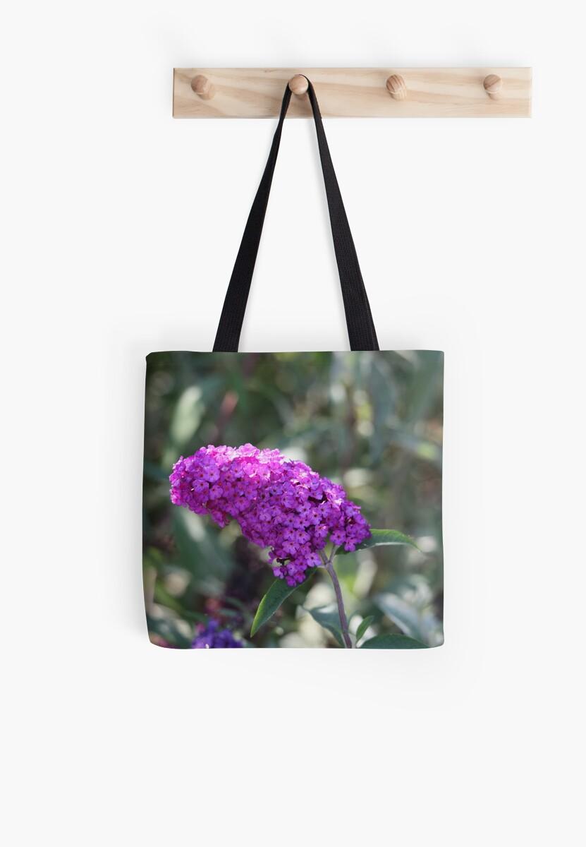 Purple Flower by Thomas Murphy