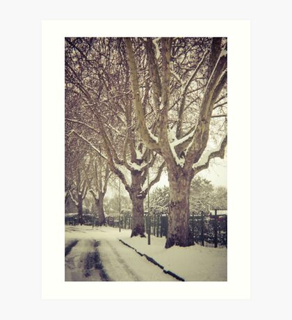 Tree Lined Art Print
