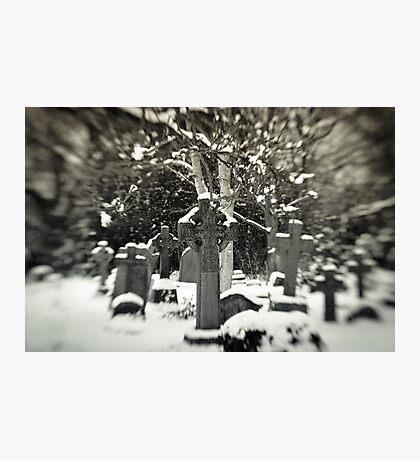Rest  Photographic Print